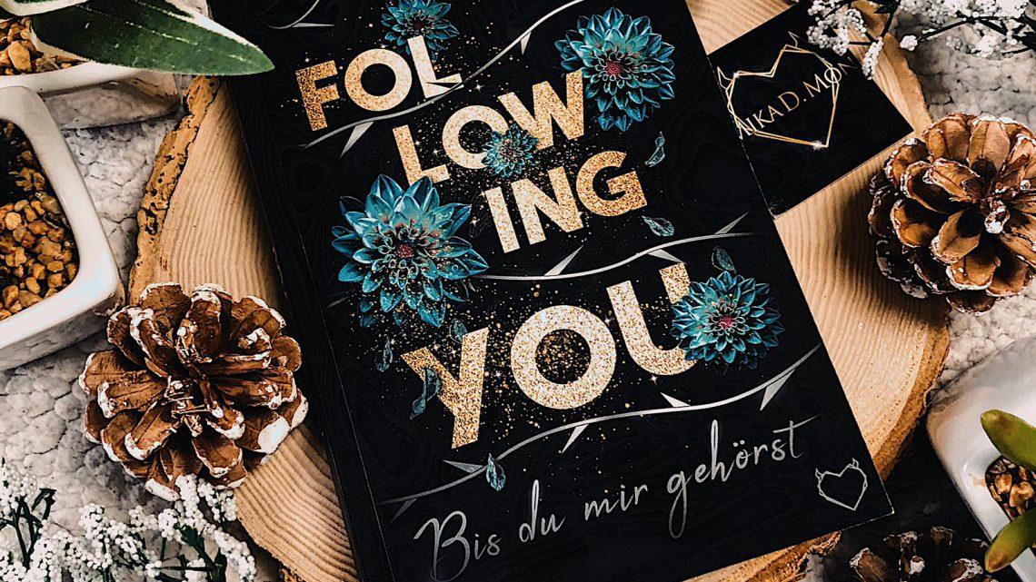 ||» Rezension «|| Following You: bis du mir gehörst [von Mika D. Mon]
